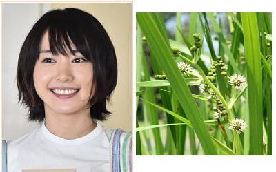 nigehaji-mikuri-yurai